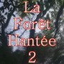 La Forêt Hantée 2 - Haunted Forest II